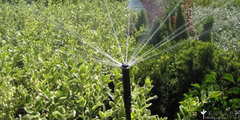 中升塑业园林管:园艺师的好帮手