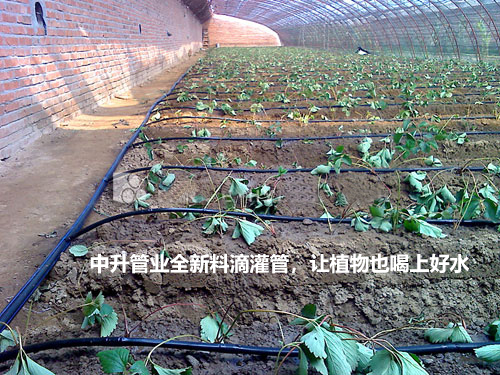 智能灌溉控制器的诸多优点