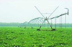 灌溉的主要形式有哪些?
